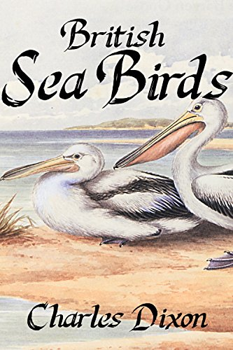 Large book cover: British Sea Birds