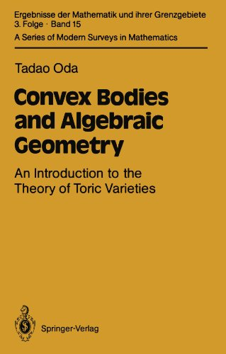 Large book cover: Convex Bodies and Algebraic Geometry