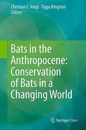 Large book cover: Bats in the Anthropocene: Conservation of Bats in a Changing World