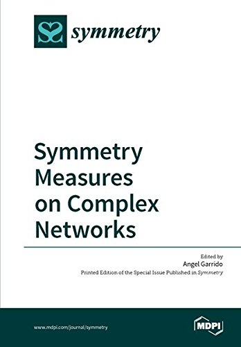 Large book cover: Symmetry Measures on Complex Networks