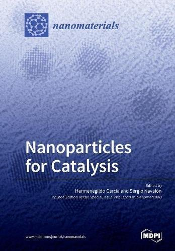 Large book cover: Nanoparticles for Catalysis