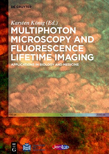 Large book cover: Multiphoton Microscopy and Fluorescence Lifetime Imaging