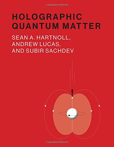 Large book cover: Holographic Quantum Matter