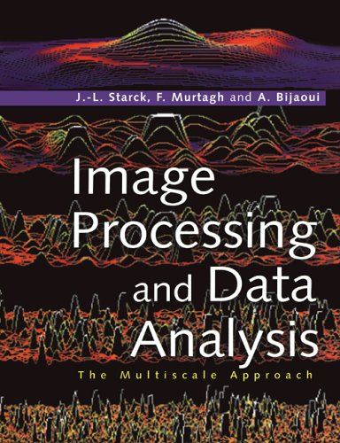 Large book cover: Image Processing and Data Analysis: The Multiscale Approach