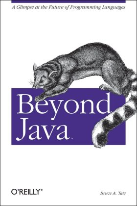 Large book cover: Beyond Java