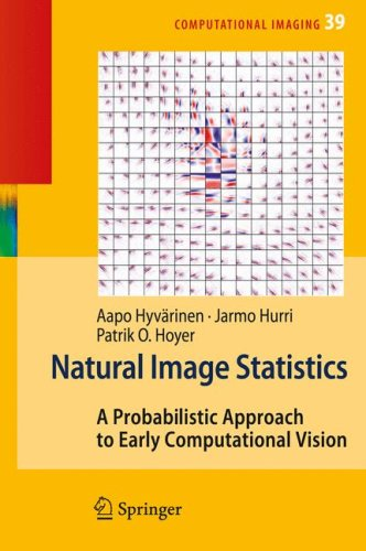 Large book cover: Natural Image Statistics