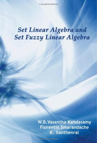 Large book cover: Set Linear Algebra and Set Fuzzy Linear Algebra