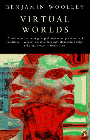 Large book cover: Virtual Worlds: A Journey in Hype and Hyperreality