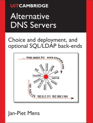 Large book cover: Alternative DNS Servers