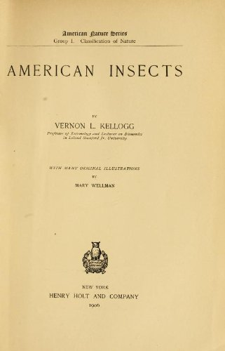 Large book cover: American Insects