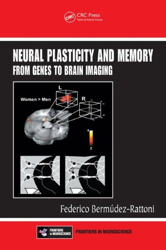 Large book cover: Neural Plasticity and Memory: From Genes to Brain Imaging