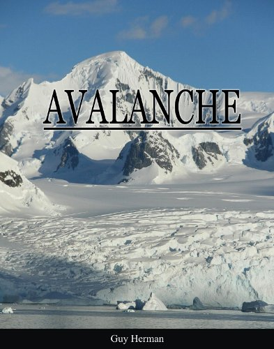 Large book cover: Avalanche