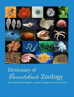 Large book cover: Dictionary Of Invertebrate Zoology