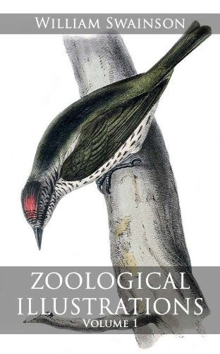 Large book cover: Zoological Illustrations