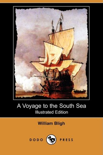 Large book cover: A Voyage to the South Sea